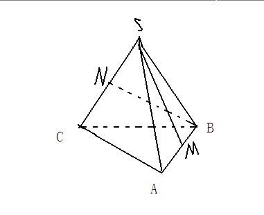 高一数学立体几何