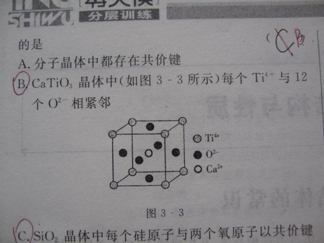 分子晶体与原子晶体_物质结构