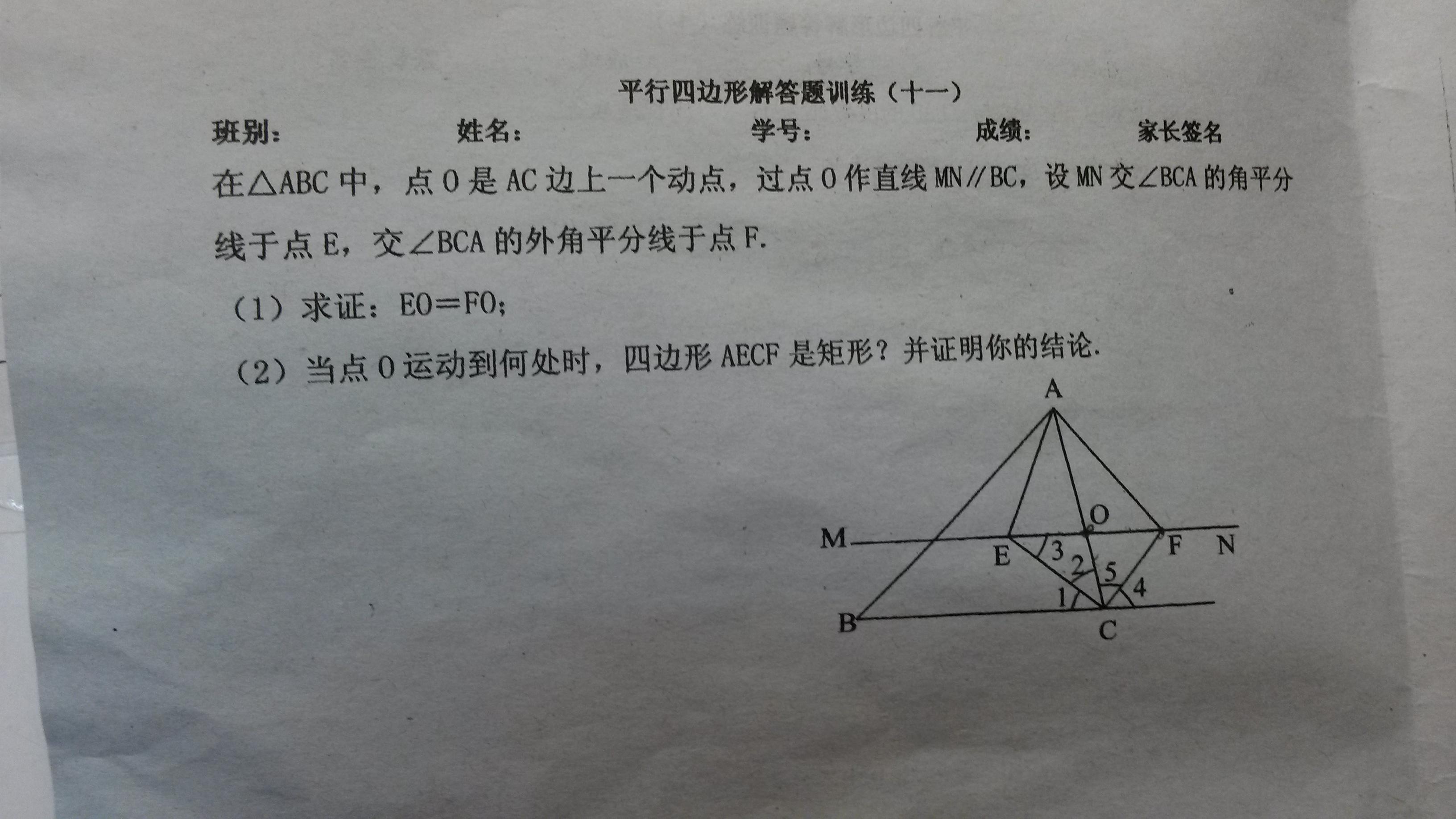 在三角形abc中,_初二数学图形变换