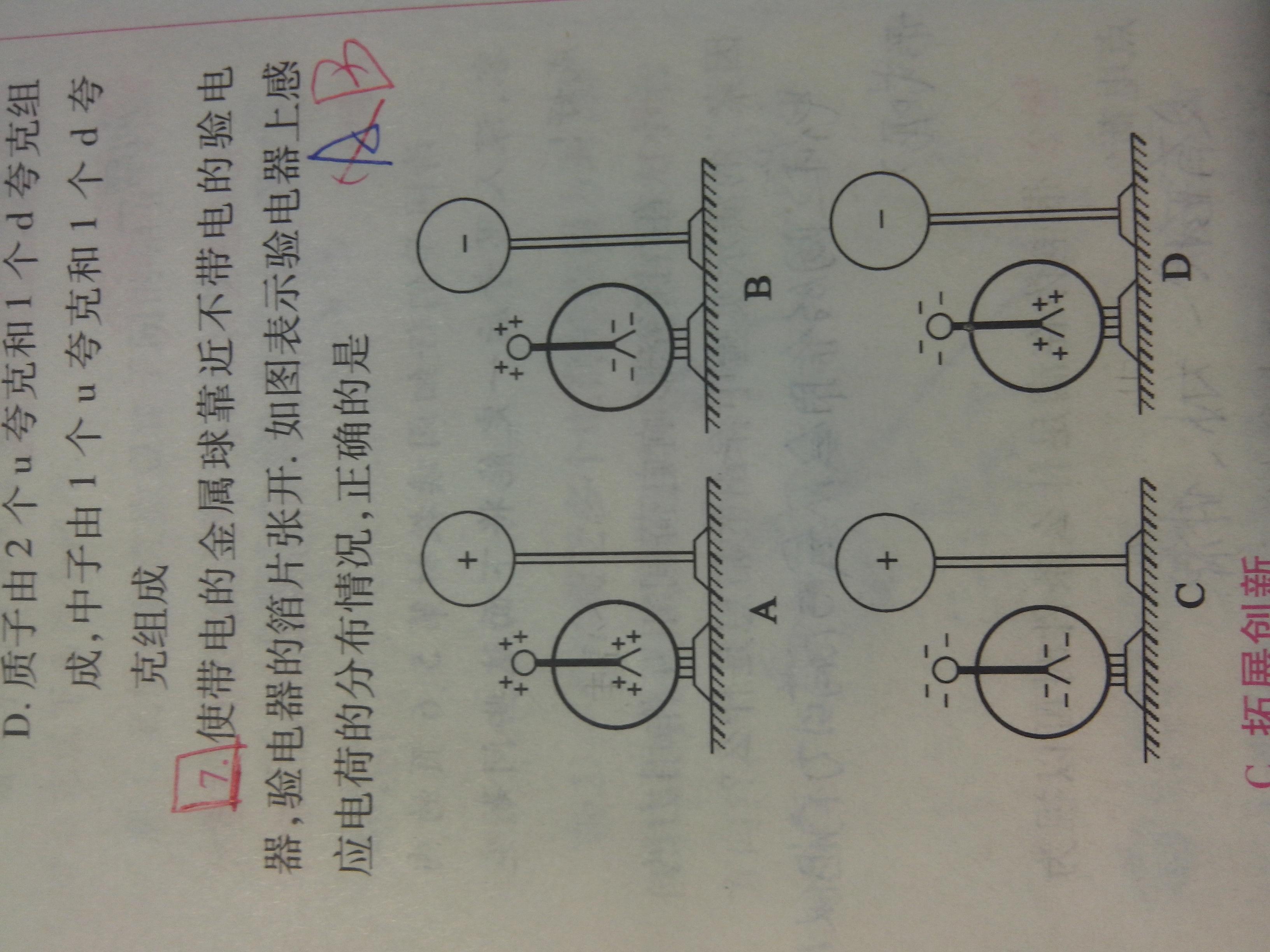 电荷及其守恒定律_高二物理电磁学