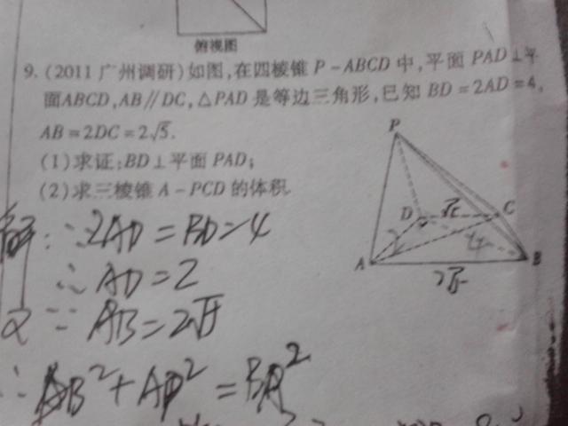 立体几何_高一数学