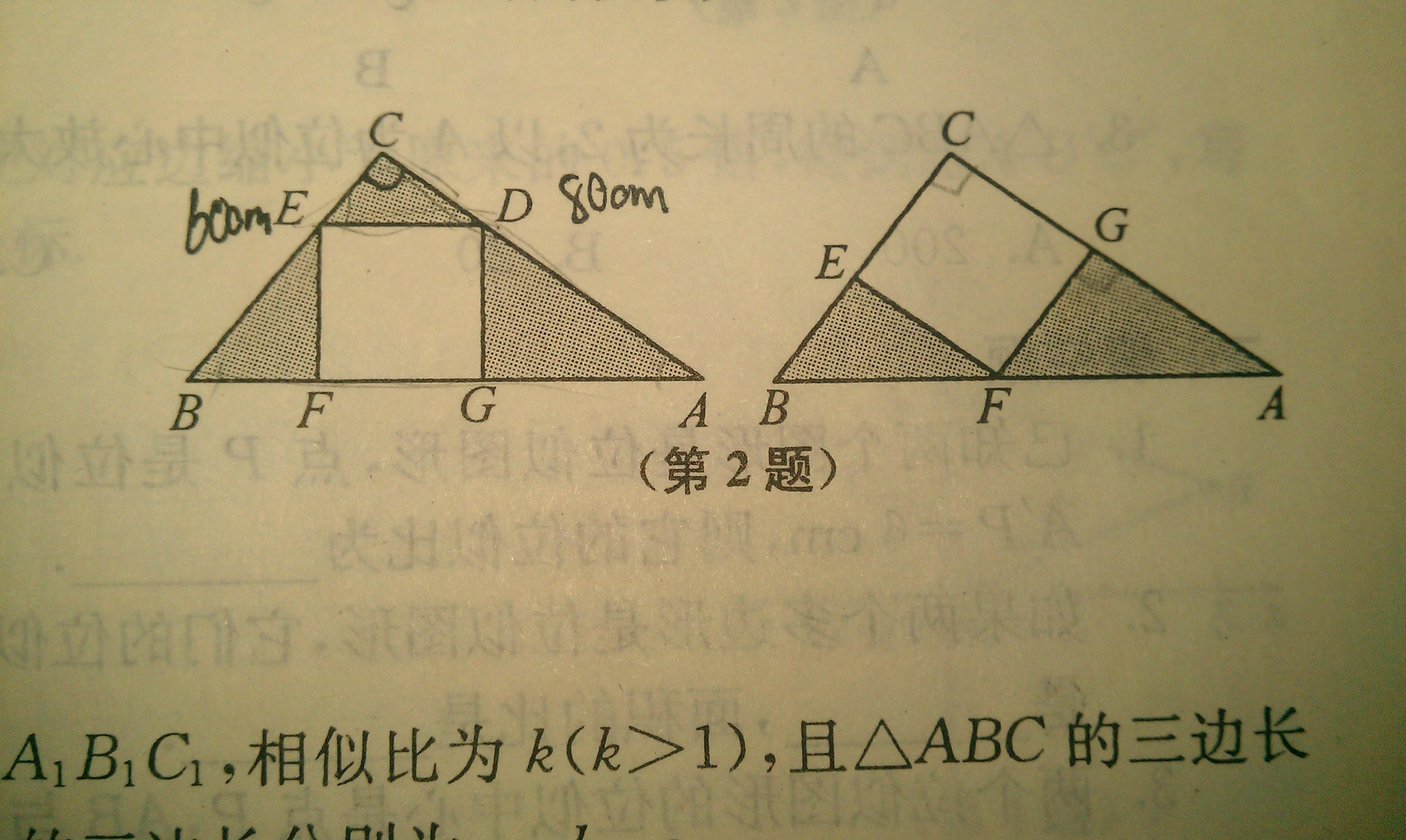 面积_初二数学解直角三角形