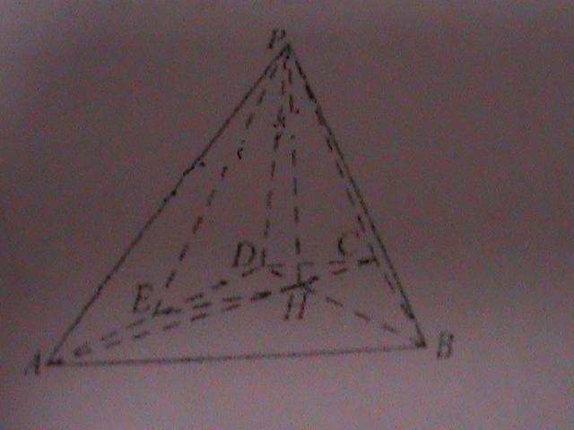 立体几何_立体几何_数学