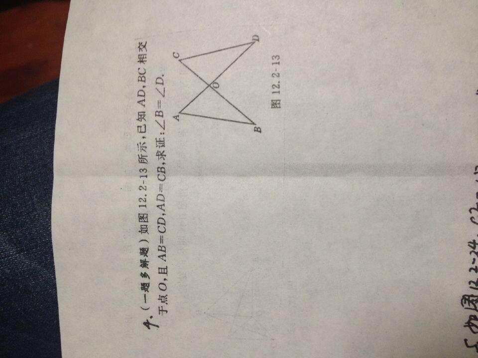 证明三角形全等_初二数学几何图形的初步认识